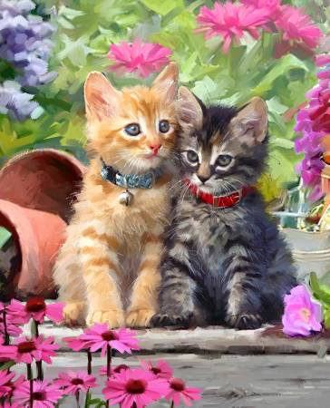 Kittens & Flowers Panel 36in