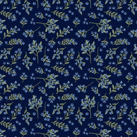 Midnight Blueberries