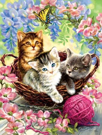 Kittens and Flowers 500pc