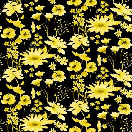 Black/Yellow Daisy