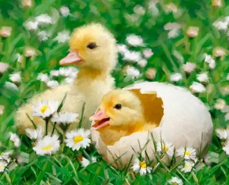 Easter Chicks in Egg Panel 36in